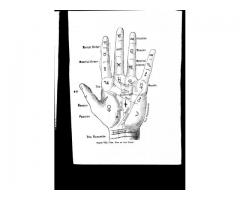 Palmistry book - The Art and Science of Hand Reading - Review